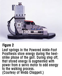 Figure 2 - Leaf springs in the Powered Ankle-Foot Prosthesis store energy during the heel-strike phase of the gait. During step off, that stored energy is augmented with power from a servo motor to add energy to the walking process. (Courtesy of Webb Chappell.)