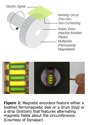 Figure 2: Magnetic encoders feature either a toothed ferromagnetic disk or a drum (top) or a strip (bottom) that features alternating magnetic fields about the circumference. (Courtesy of Dynapar)