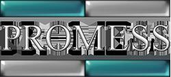 Promess Inc. Logo