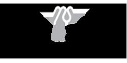 Mapes & Sprowl Steel Ltd. Logo