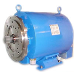 TAZ 300 Traction Motor